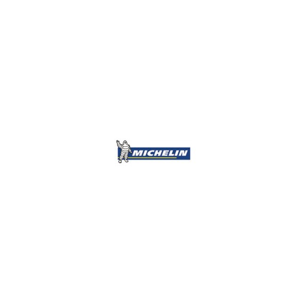 Michelin 255/50R19 107V XL LATITUDE ALPIN LA2 ZP * GRNX Kış Lastikleri