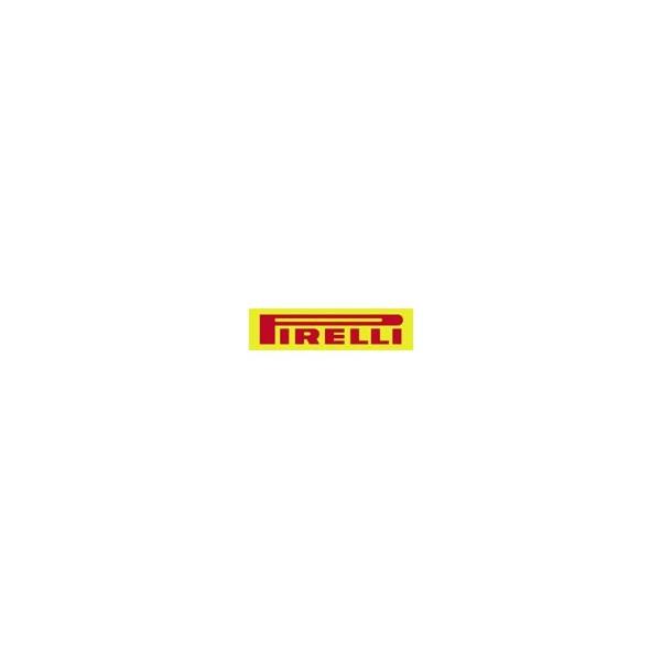 Pirelli 235/65R17 108V XL Scorpion Verde Yaz Lastikleri